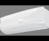 iGreen PRO ERP DC Inverter